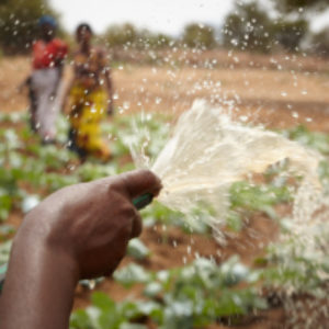 Caritas calls on governments to push harder on sustainable development