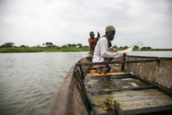 Massive humanitarian crisis in Lake Chad region