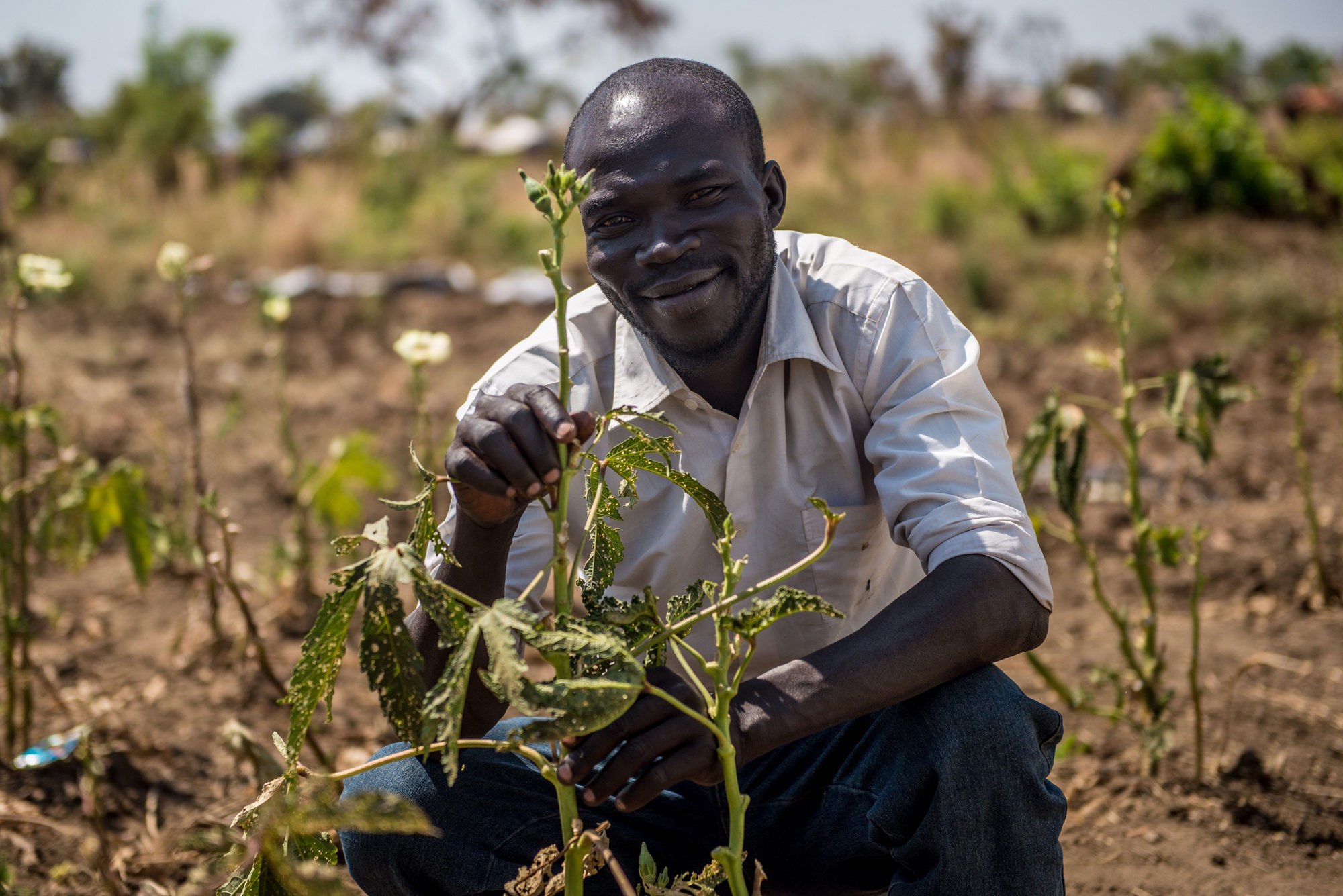 Malis from South Sudan planted okra seeds gievn to him by Caritas Uganda