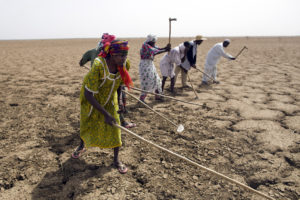 Climate change is expected to make drought and food security worse.