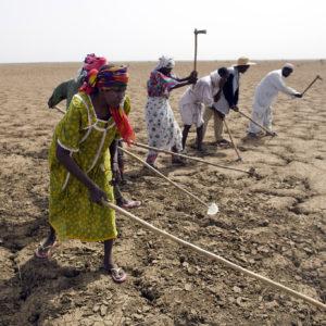 Crunch UN climate change talks must deliver plan to save planet