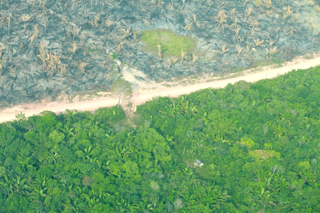 Newly deforested area at Novo Aripuanã, Amazonas state.