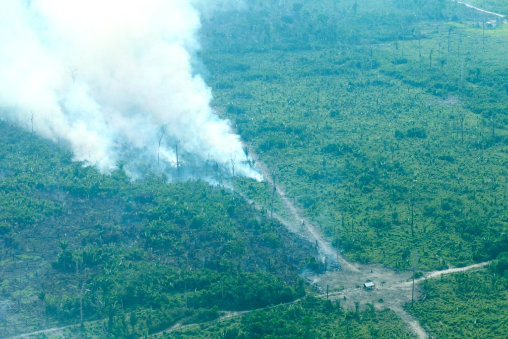 Fires constantly burn close to trails opened through the forest for illegal logging between Novo Aripuanã and Apuí, Amazonas state.