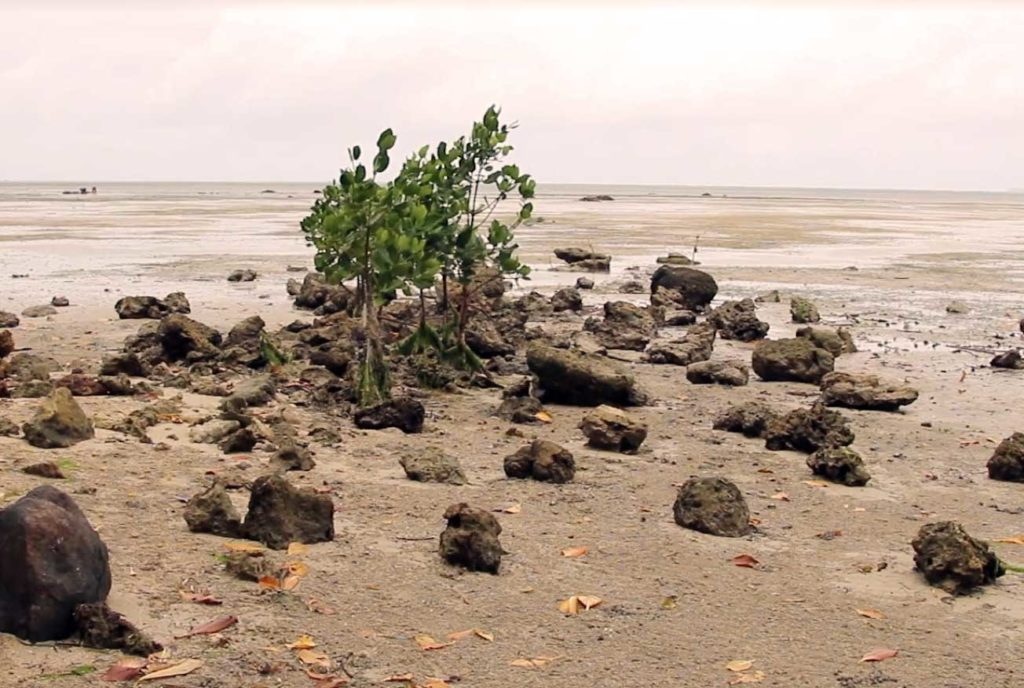 Climate change and mining exploitation in Fiji