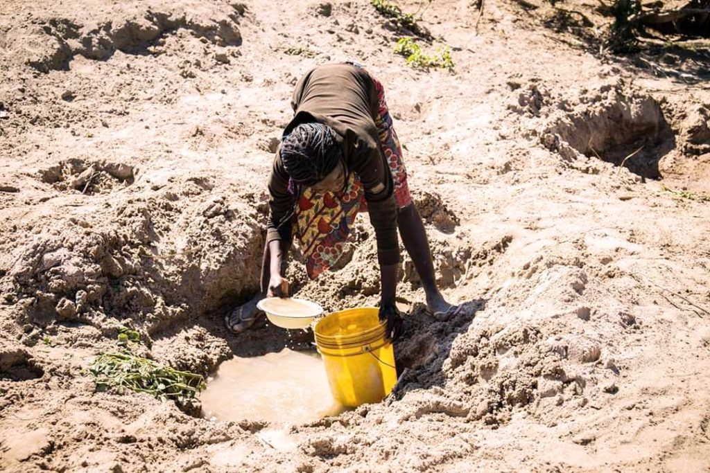 Prolonged, severe drought in Zambia increases food insecurity.