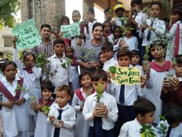Caritas Pakistan mobilised schools, religious orders and association to plant one million trees
