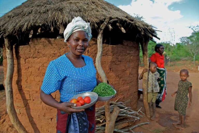 World Food Day - Caritas promotes eco-friendly agriculture programmes