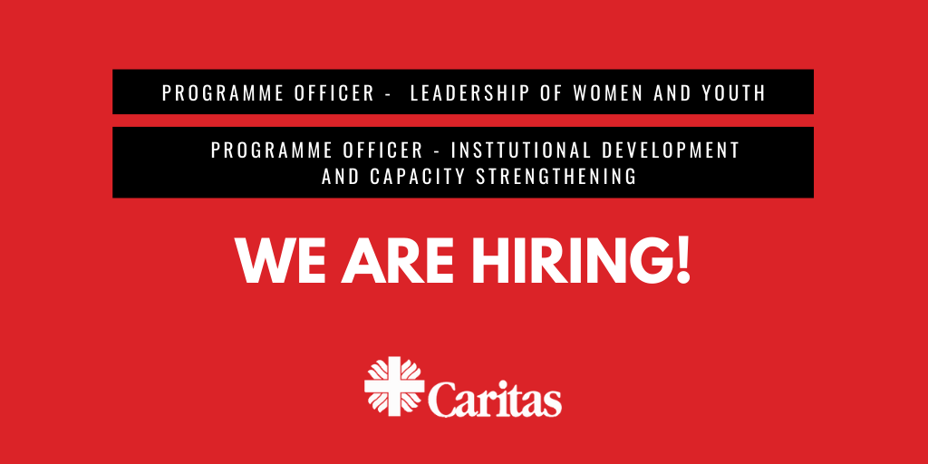 Job opportunity – Institutional development and capacity strengthening programme officer