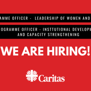 Job opportunity – Programme Officer promoting leadership of women and youth