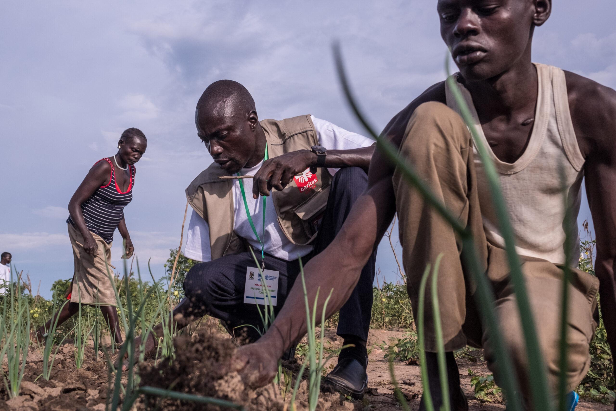 """Caritas Internationalis: """"La agricultura industrial no es el único camino hacia la justicia alimentaria""""."""