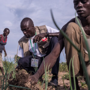 Caritas Internationalis : « L'agriculture industrielle n'est pas la seule voie vers la justice alimentaire ».